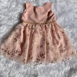 Children's Place Pink Gold Embroidery Tulle Dress